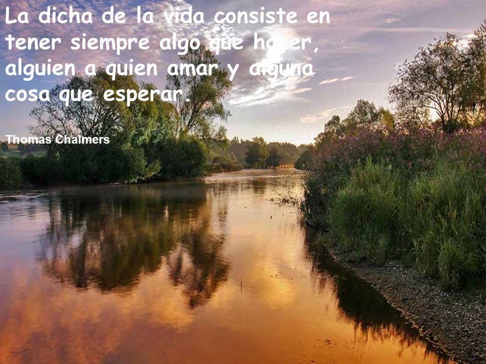 La dicha de la vida consiste en tener siempre algo que hacer, alguien a quien amar y alguna cosa que esperar.