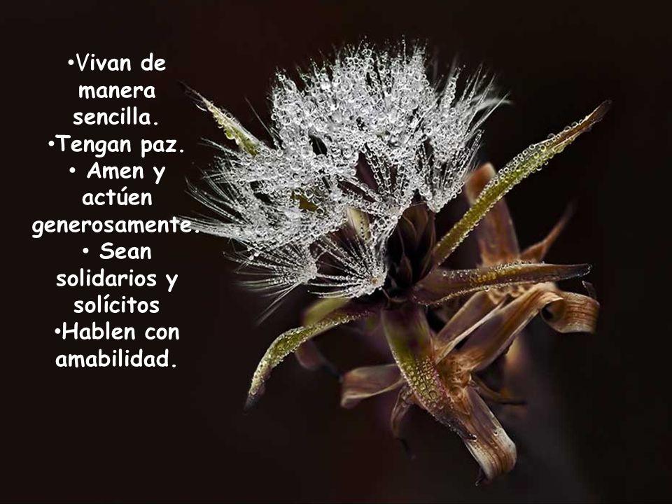 Amen y actúen generosamente. Sean solidarios y solícitos