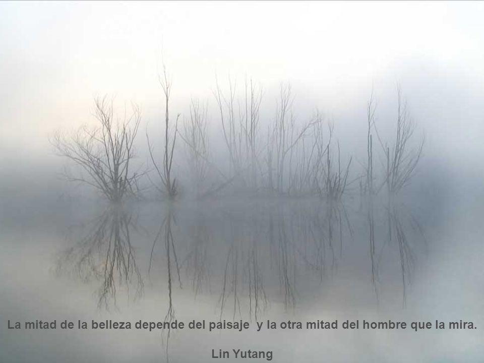 La mitad de la belleza depende del paisaje y la otra mitad del hombre que la mira.