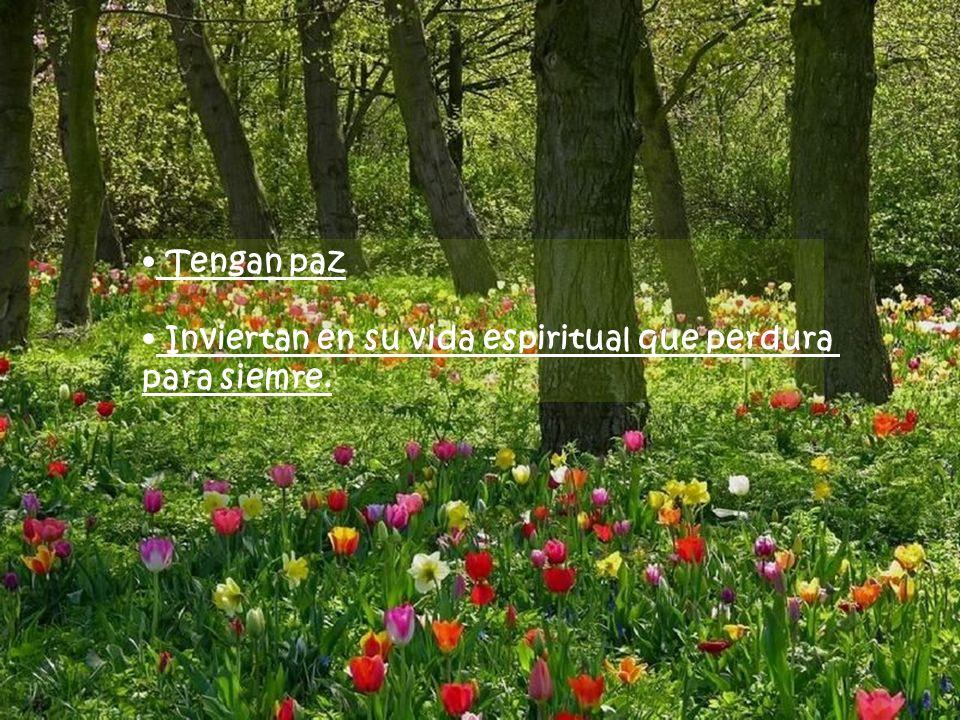 Tengan paz Inviertan en su vida espiritual que perdura para siemre.