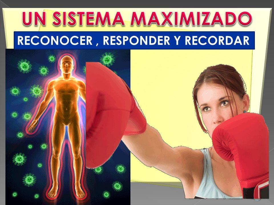 UN SISTEMA MAXIMIZADO RECONOCER , RESPONDER Y RECORDAR