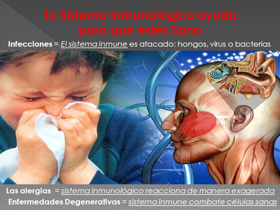 Tu Sistema Inmunológico ayuda