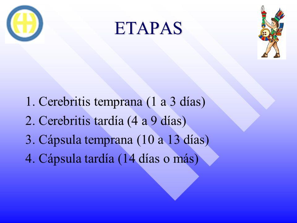 ETAPAS 1. Cerebritis temprana (1 a 3 días)