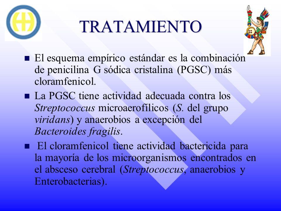 TRATAMIENTO El esquema empírico estándar es la combinación de penicilina G sódica cristalina (PGSC) más cloramfenicol.