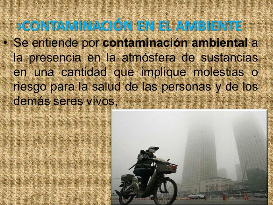 ›CONTAMINACIÓN EN EL AMBIENTE