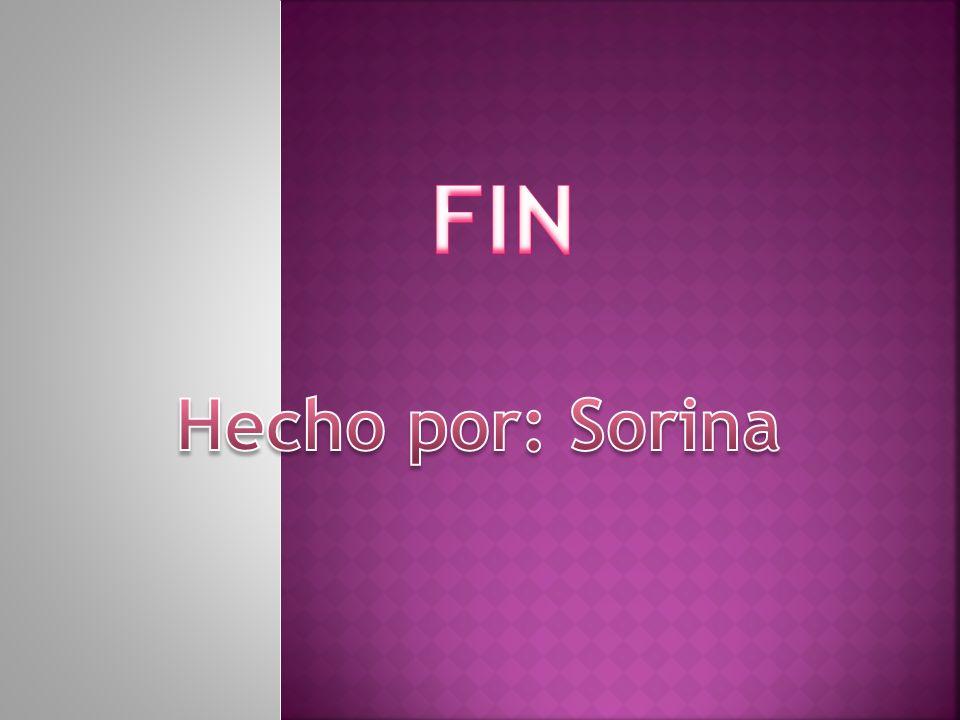 FIN Hecho por: Sorina