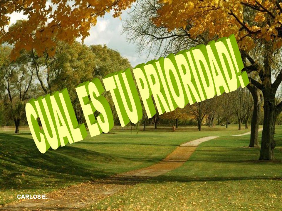 CUAL ES TU PRIORIDAD! CARLOS E..
