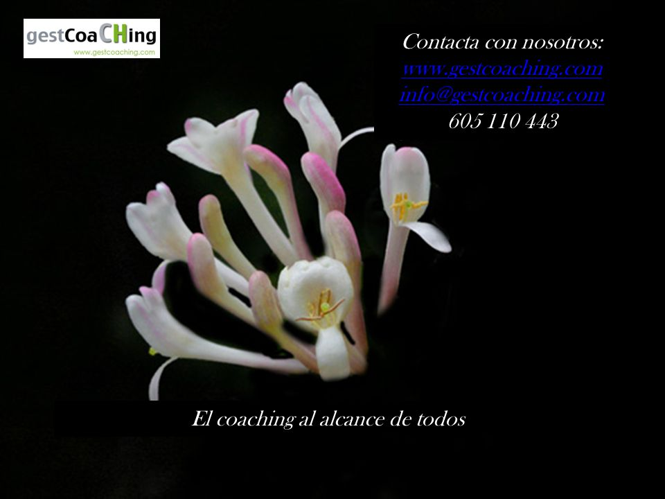 Contacta con nosotros: www.gestcoaching.com info@gestcoaching.com