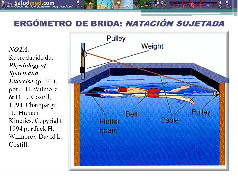 ERGÓMETRO DE BRIDA: NATACIÓN SUJETADA