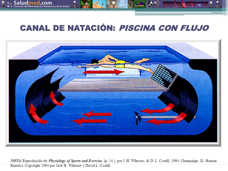 CANAL DE NATACIÓN: PISCINA CON FLUJO
