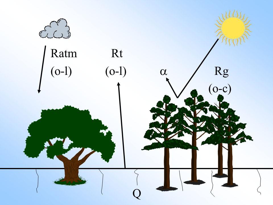 Ratm Rt (o-l) (o-l) a Rg (o-c) Q