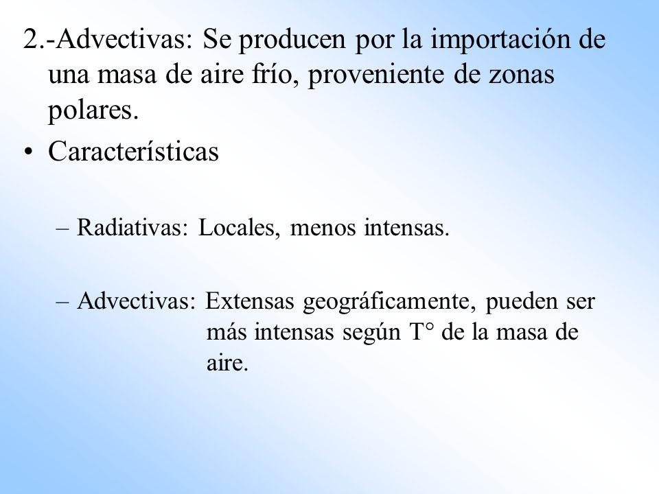 2.-Advectivas: Se producen por la importación de una masa de aire frío, proveniente de zonas polares.