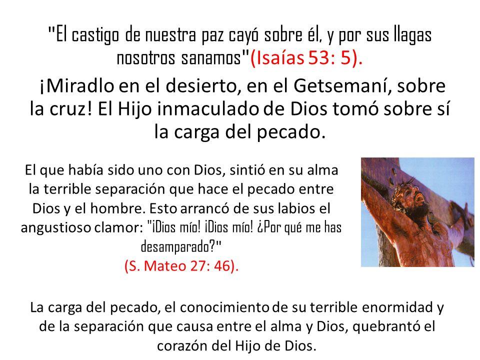 El castigo de nuestra paz cayó sobre él, y por sus llagas nosotros sanamos (Isaías 53: 5). ¡Miradlo en el desierto, en el Getsemaní, sobre la cruz! El Hijo inmaculado de Dios tomó sobre sí la carga del pecado.