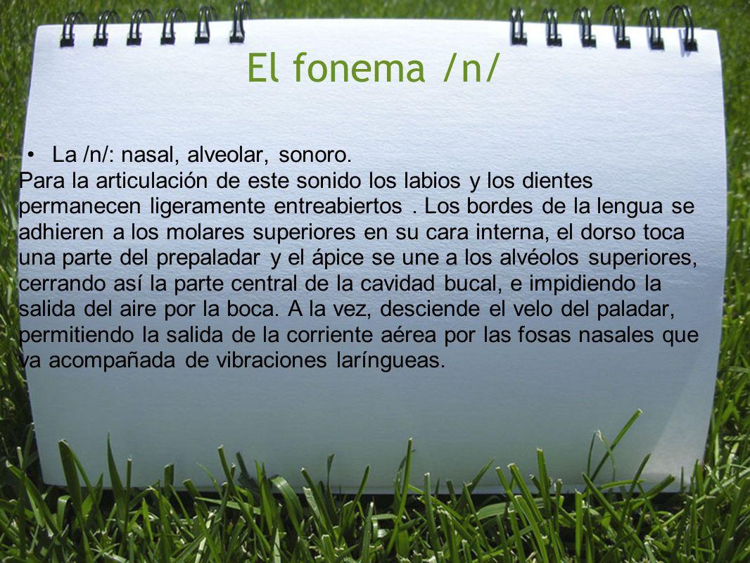 El fonema /n/ La /n/: nasal, alveolar, sonoro.