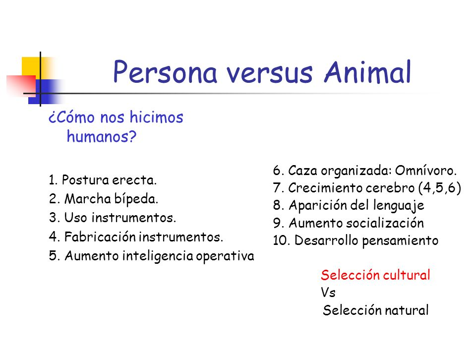 Persona versus Animal ¿Cómo nos hicimos humanos