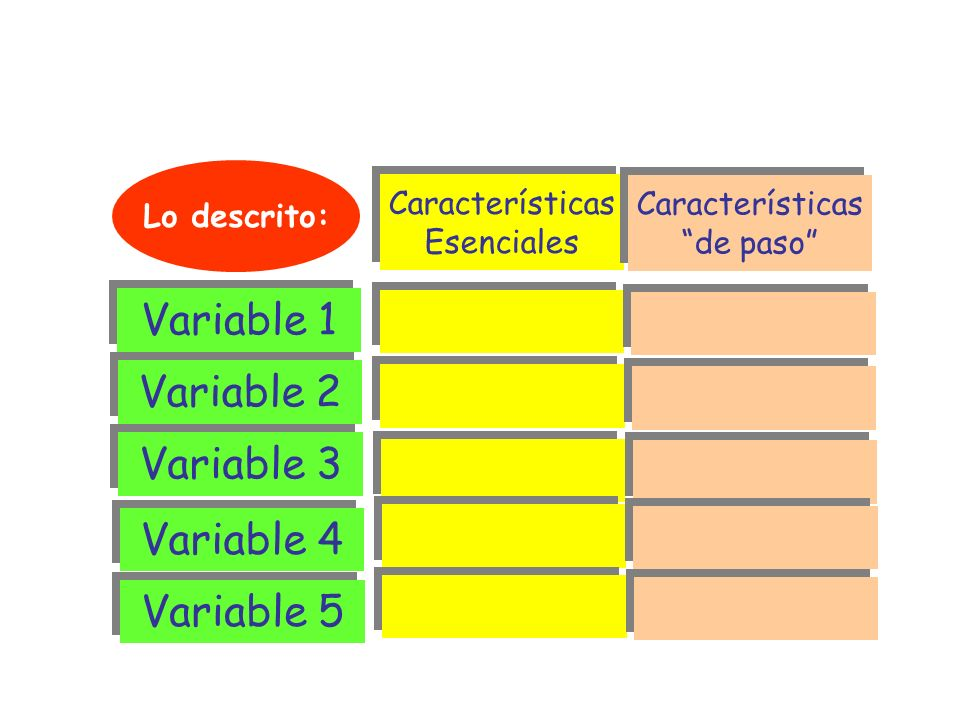 ESTRUCTURA DESCRIPTIVA