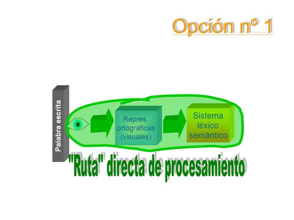 Ruta directa de procesamiento