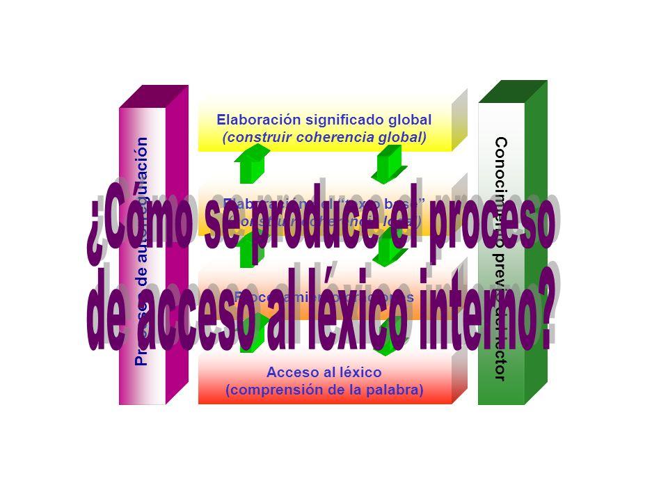 ¿Cómo se produce el proceso