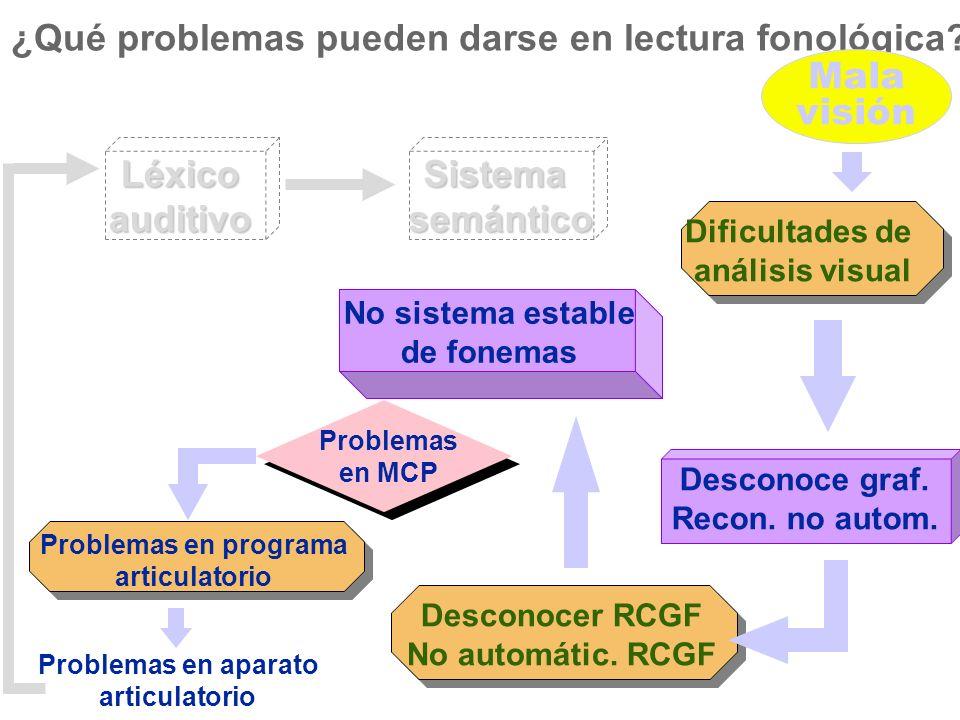 ¿Qué problemas pueden darse en lectura fonológica Mala visión