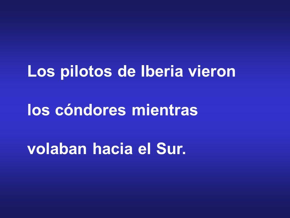Los pilotos de Iberia vieron