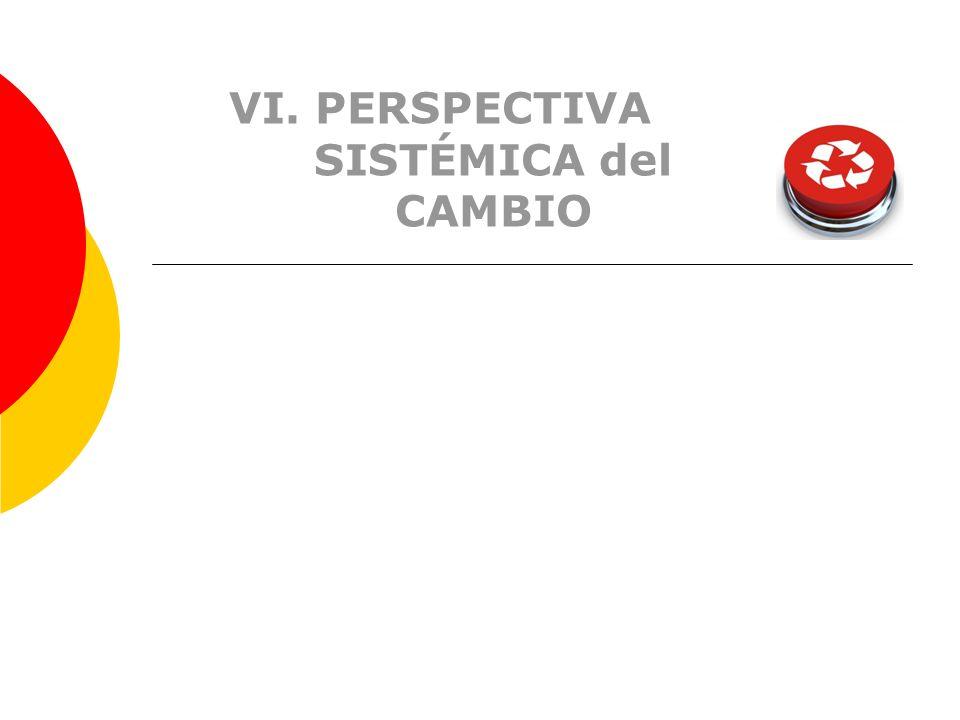 VI. PERSPECTIVA SISTÉMICA del CAMBIO