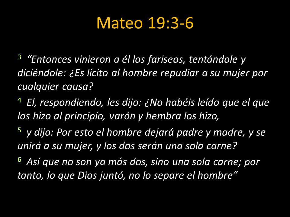 Mateo 19:3-6