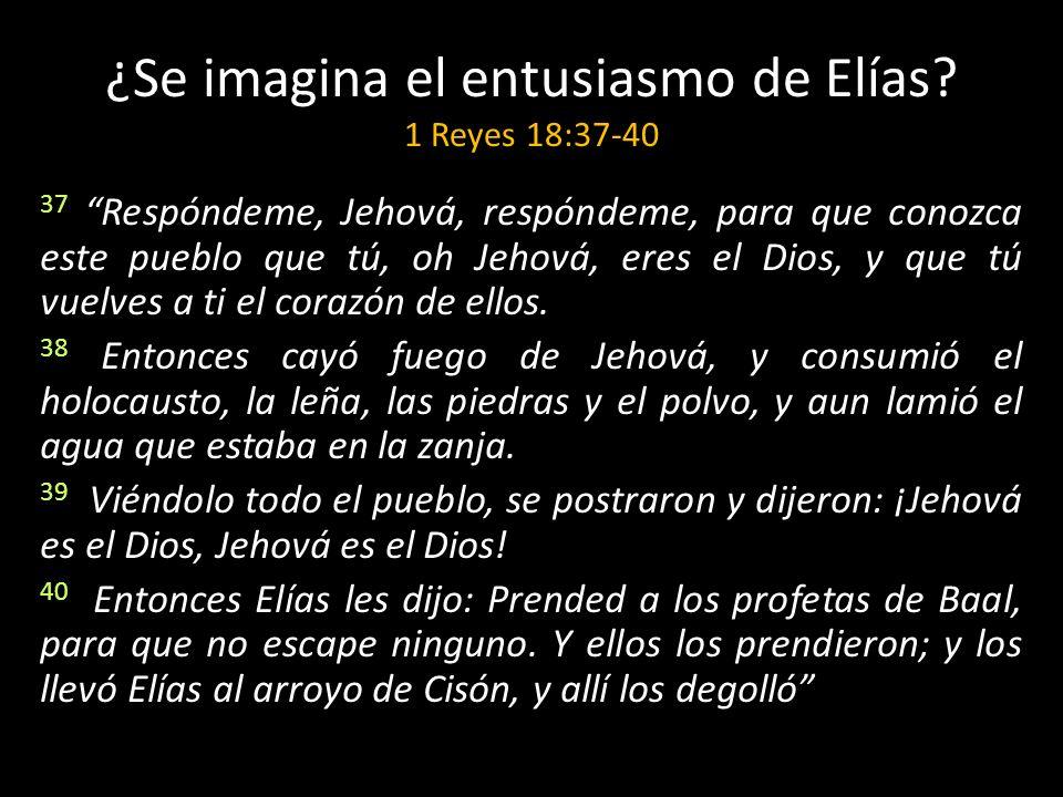 ¿Se imagina el entusiasmo de Elías 1 Reyes 18:37-40