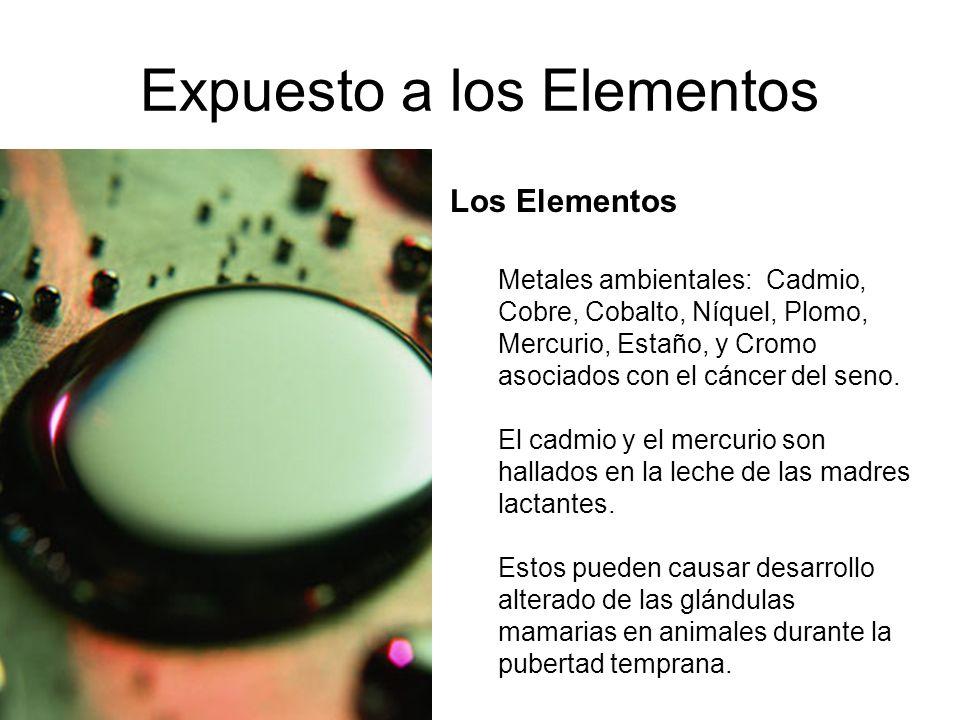 Expuesto a los Elementos