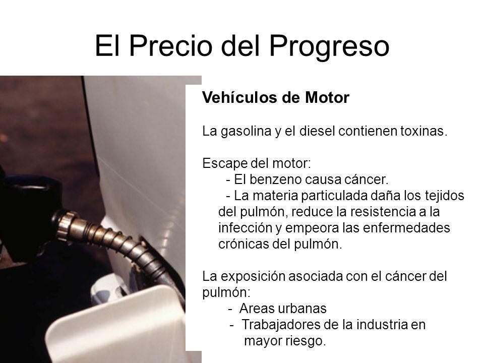 El Precio del Progreso Vehículos de Motor