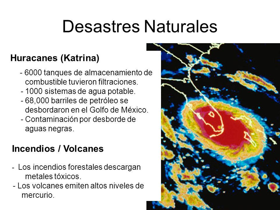 Desastres Naturales Huracanes (Katrina) Incendios / Volcanes