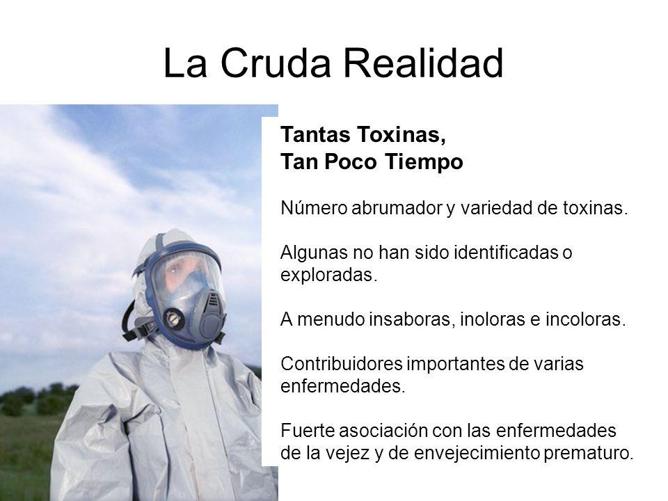 La Cruda Realidad Tantas Toxinas, Tan Poco Tiempo
