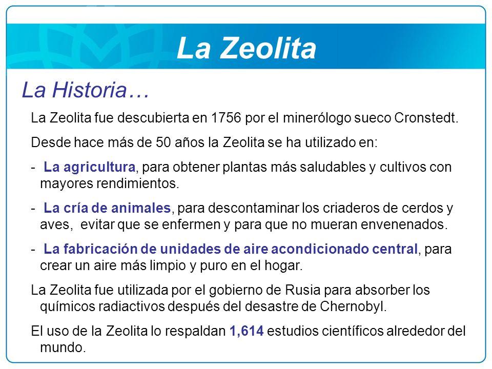 La Zeolita La Historia…