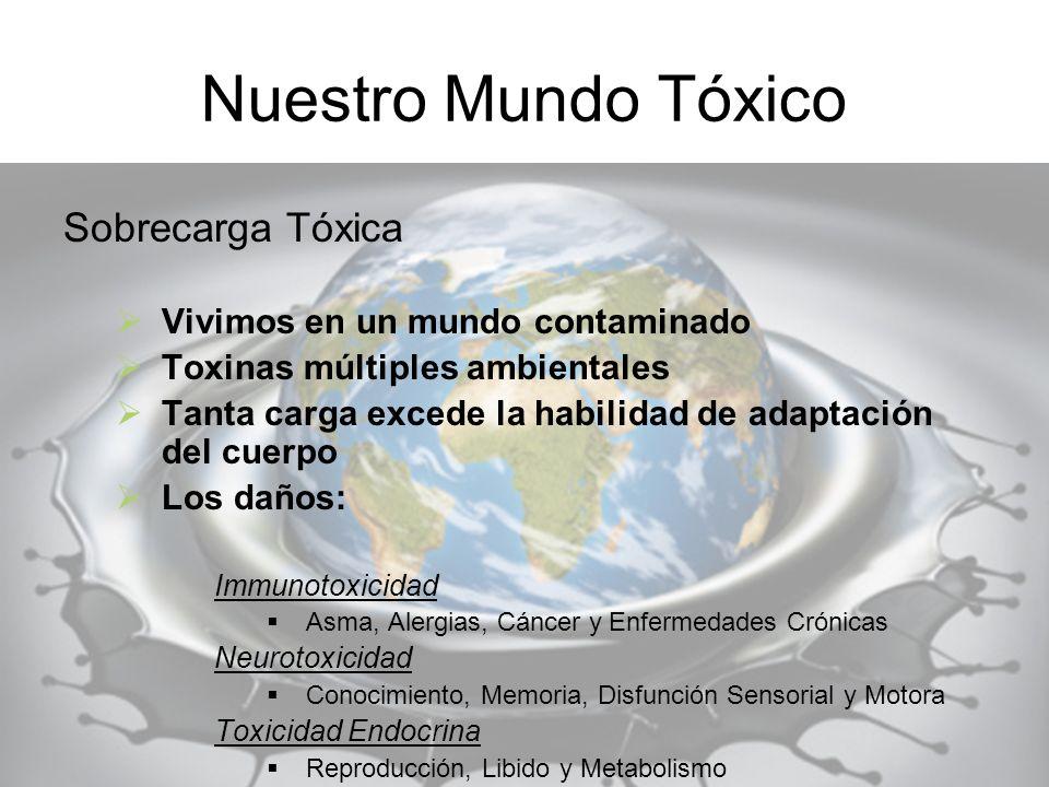 Nuestro Mundo Tóxico Sobrecarga Tóxica Vivimos en un mundo contaminado