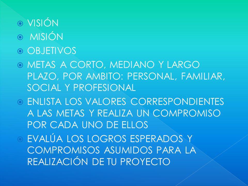 VISIÓN MISIÓN. OBJETIVOS. METAS A CORTO, MEDIANO Y LARGO PLAZO, POR AMBITO: PERSONAL, FAMILIAR, SOCIAL Y PROFESIONAL.