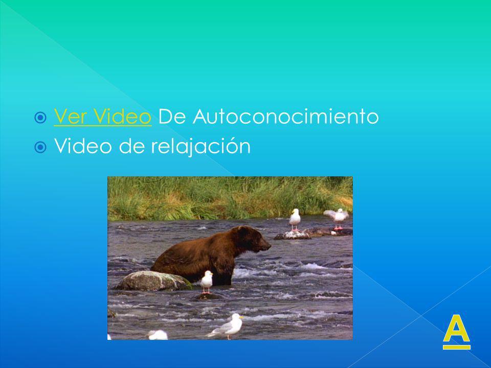 Ver Video De Autoconocimiento