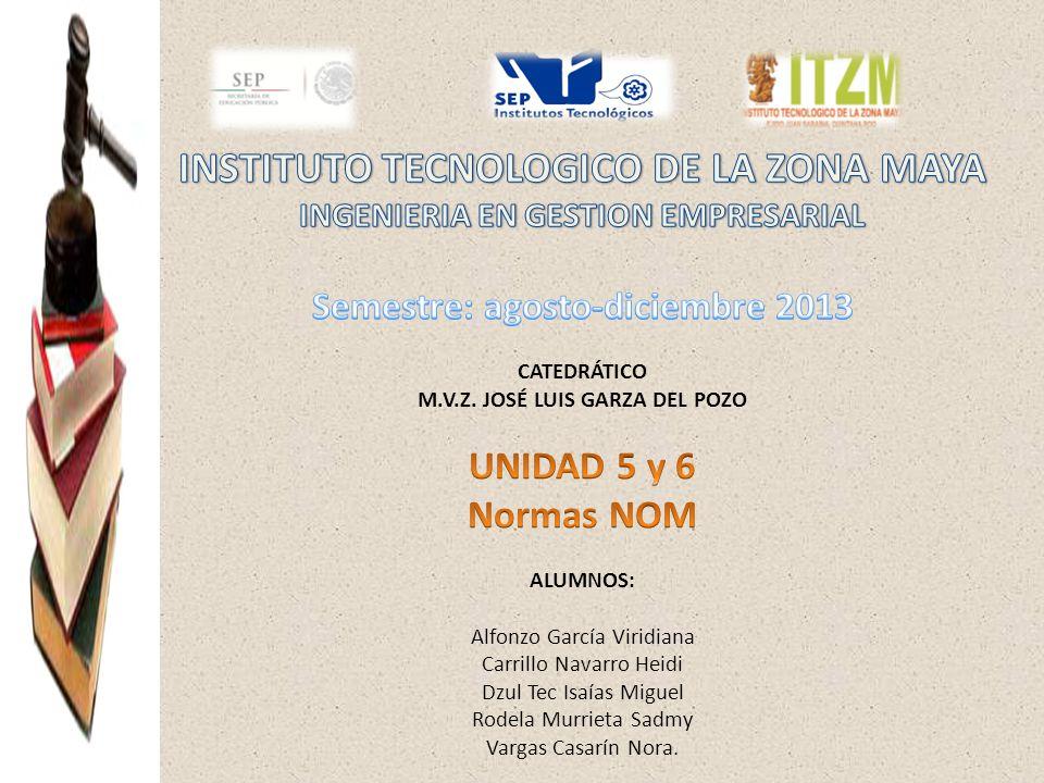 INSTITUTO TECNOLOGICO DE LA ZONA MAYA INGENIERIA EN GESTION EMPRESARIAL