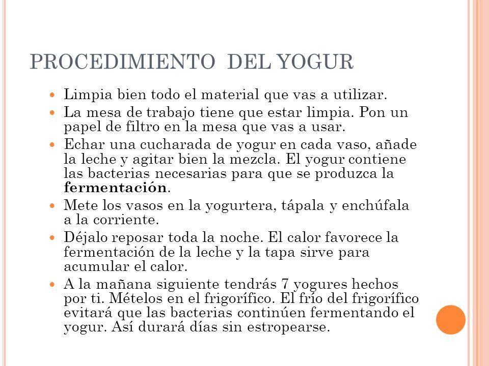 PROCEDIMIENTO DEL YOGUR