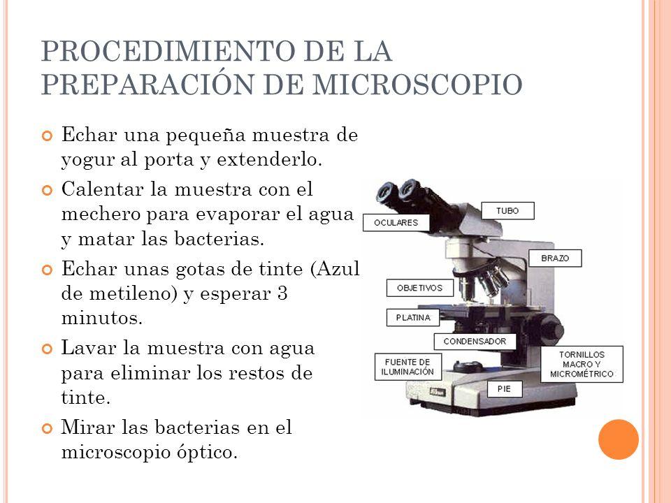 PROCEDIMIENTO DE LA PREPARACIÓN DE MICROSCOPIO