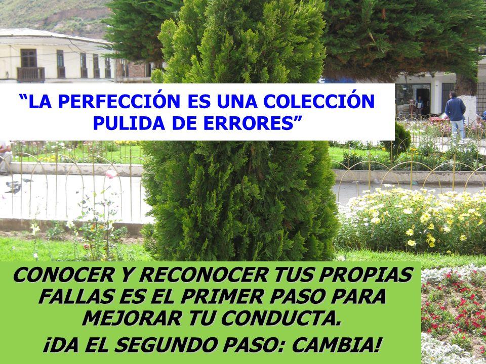 LA PERFECCIÓN ES UNA COLECCIÓN PULIDA DE ERRORES