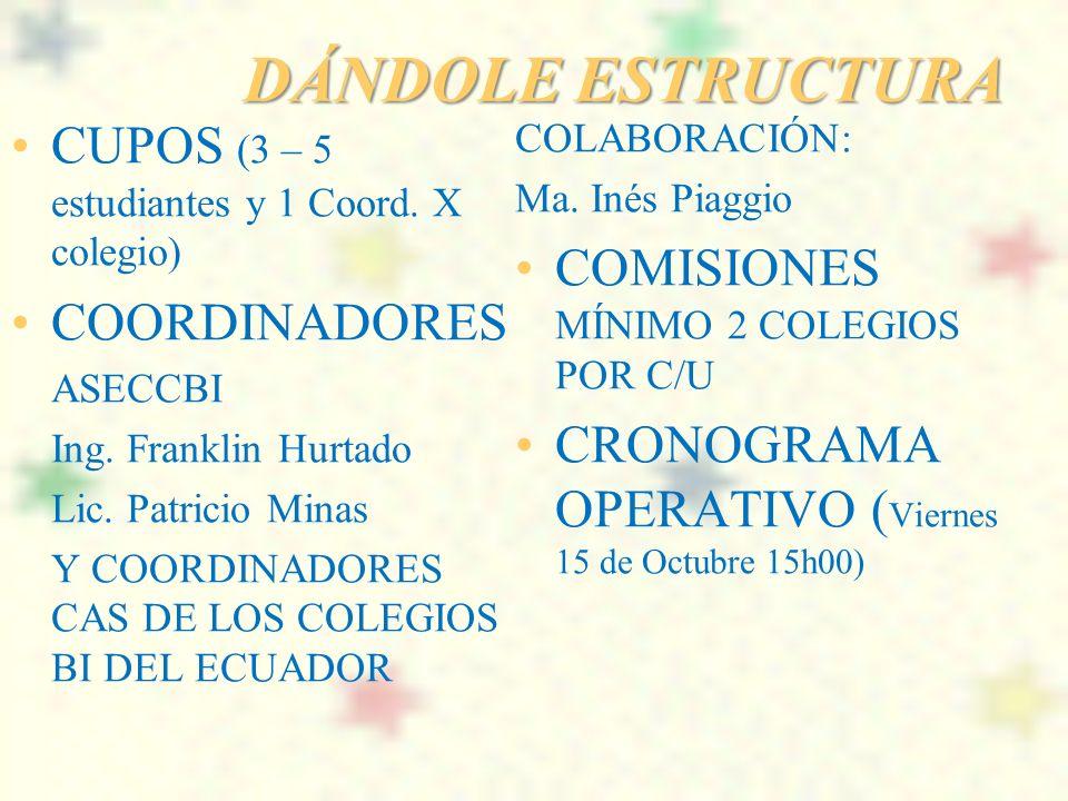 DÁNDOLE ESTRUCTURA CUPOS (3 – 5 estudiantes y 1 Coord. X colegio)