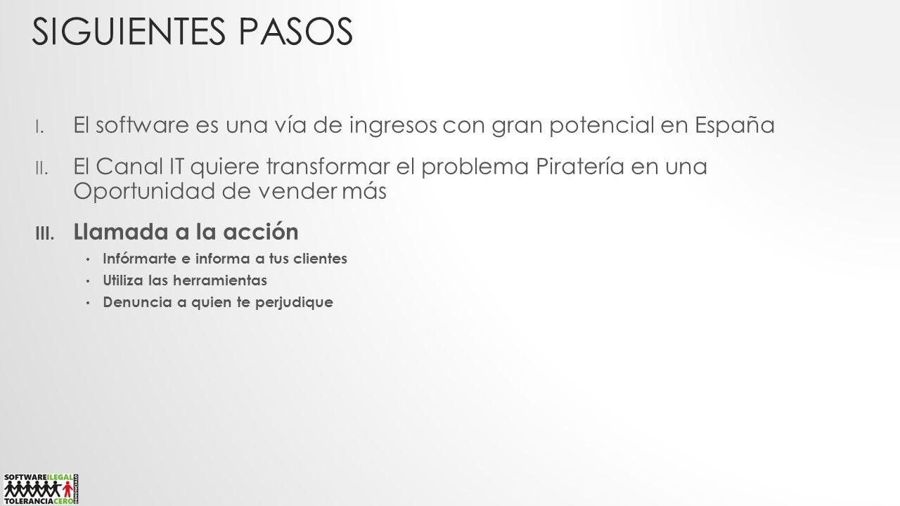Siguientes pasos El software es una vía de ingresos con gran potencial en España.