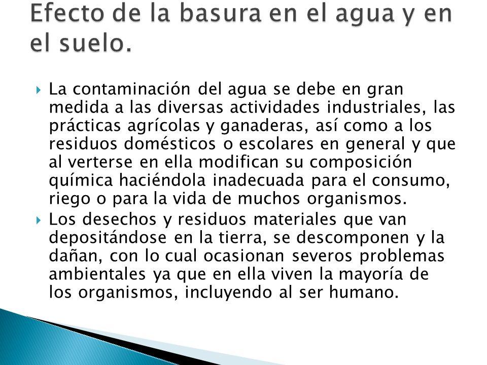 Efecto de la basura en el agua y en el suelo.