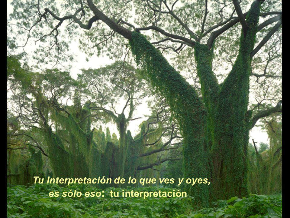 Tu Interpretación de lo que ves y oyes,