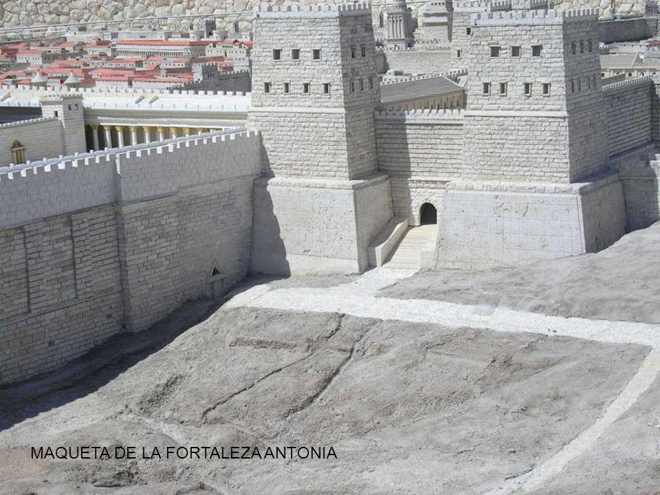 MAQUETA DE LA FORTALEZA ANTONIA