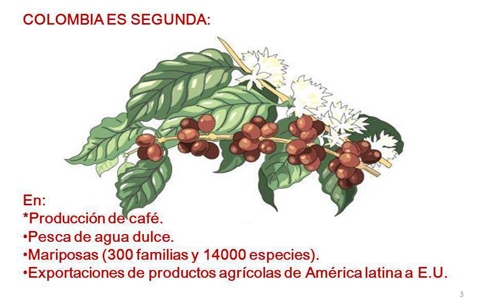COLOMBIA ES SEGUNDA: En: *Producción de café. Pesca de agua dulce. Mariposas (300 familias y 14000 especies).