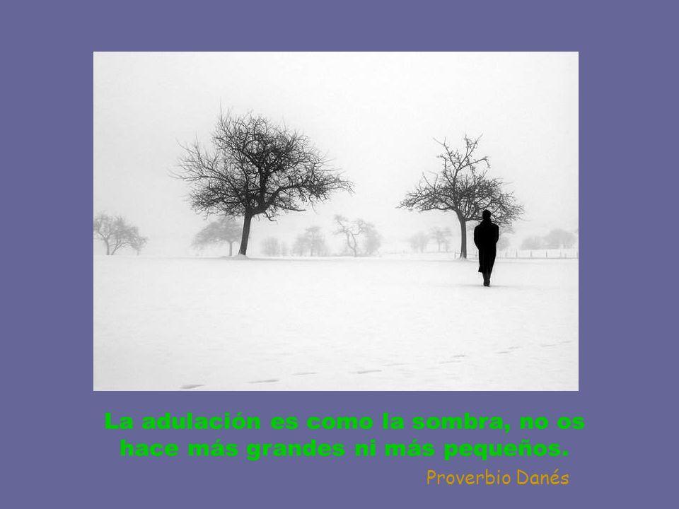 La adulación es como la sombra, no os hace más grandes ni más pequeños.
