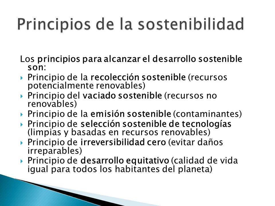 Principios de la sostenibilidad