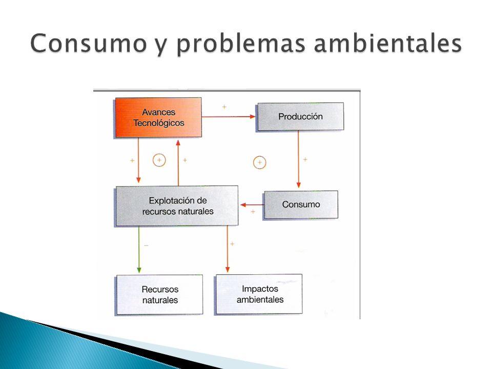 Consumo y problemas ambientales