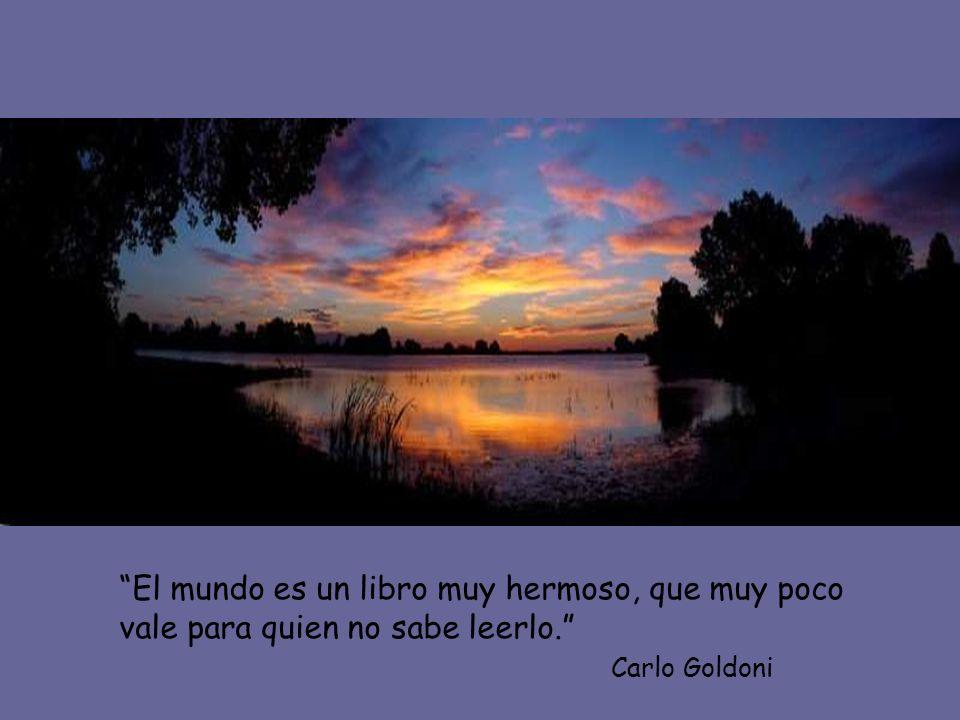 El mundo es un libro muy hermoso, que muy poco vale para quien no sabe leerlo.