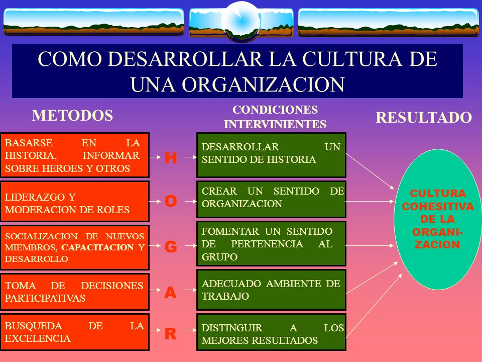 COMO DESARROLLAR LA CULTURA DE UNA ORGANIZACION